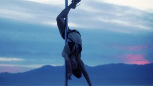 The Art of Pole Dancing