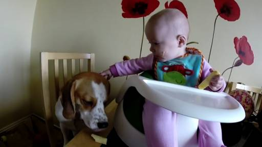 Baby Girl Shares Food With Her Dog