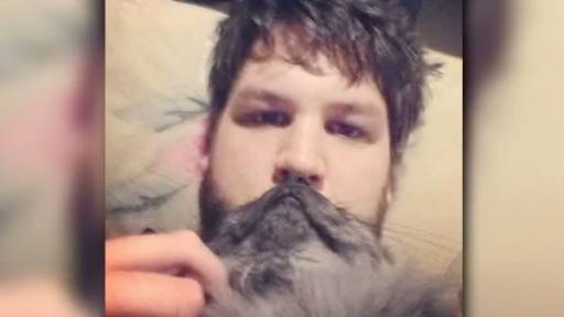 Cat Bearding: The Latest Internet Craze