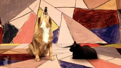 Daily Huh? Pets Cover Gotye With Remarkable Precision