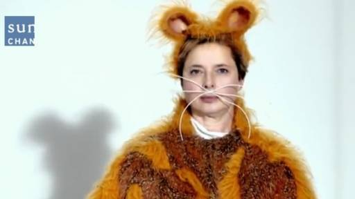 Daily Huh? Isabella Rossellini Gives Birth to 10 Hamsters