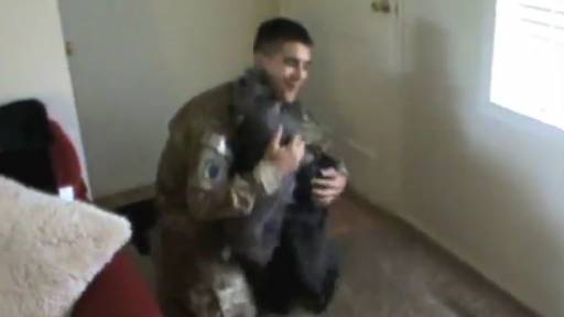 Daily Pet: Mini Schnauzers Welcome Home Soldier