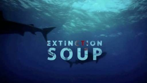 Extinction Soup: Sharks Endangered Due to Eastern Delicacy