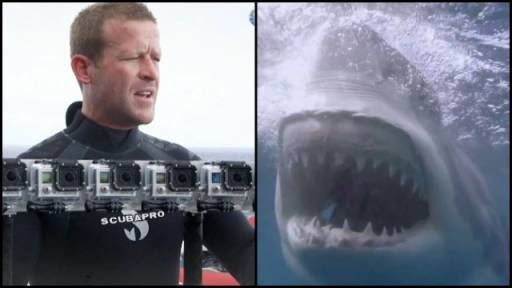How the Awesome Shark Footage Comes Together for 'Shark Week'