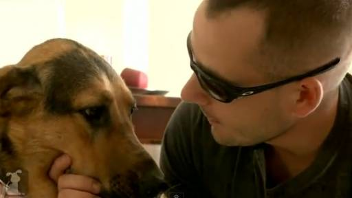Daily Pet: Marine Finds Comfort in Service Dog