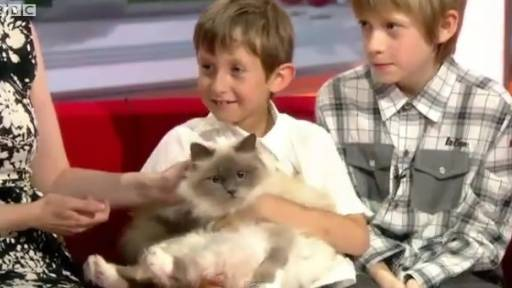 Daily Pet: Cat Helps Boy With Selective Mutism
