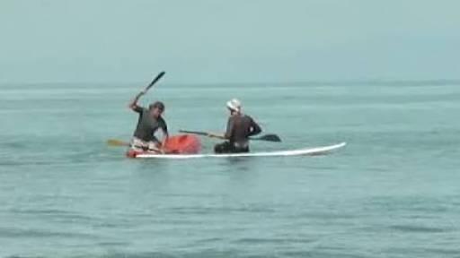 Machete Attack on Surfers at Sea
