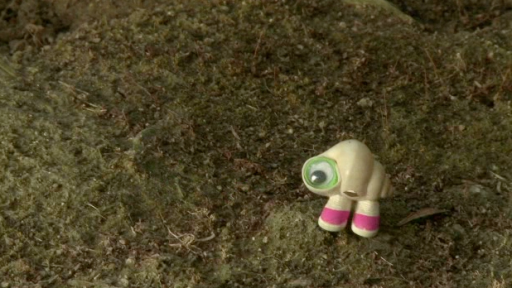 Marcel Is the Cutest Little Shell With Shoes On!