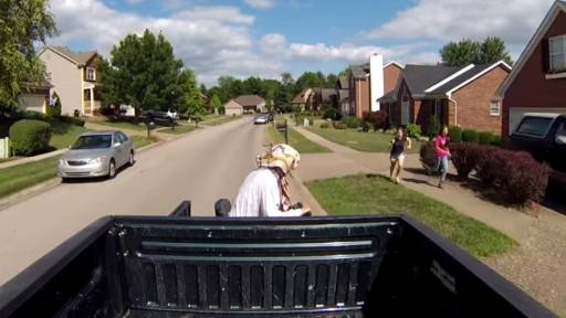 'Sir, You Have an Old Woman Hanging Out the Back of Your Truck!