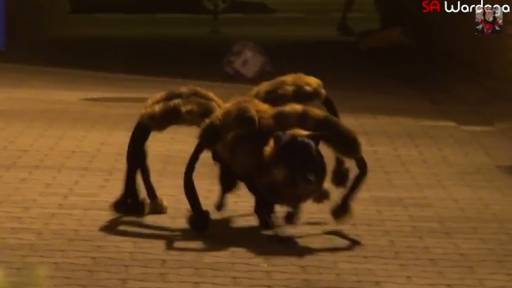 Beware of the Mutant Giant Spider Running Around Town!