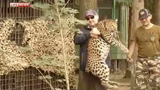 Police Rescue Illegal Pet Leopard From Basement