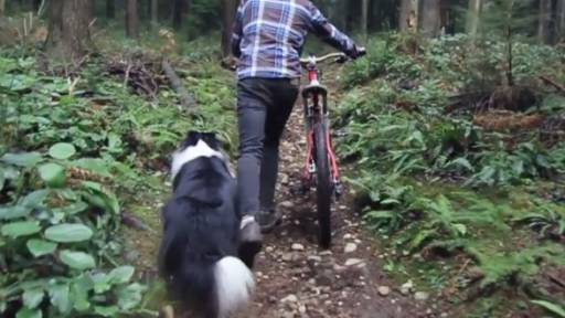 Man's Best Friend Keeps Up With the Mountain Bike