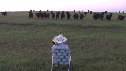 Calling the Cattle in With a Little 'Royals'