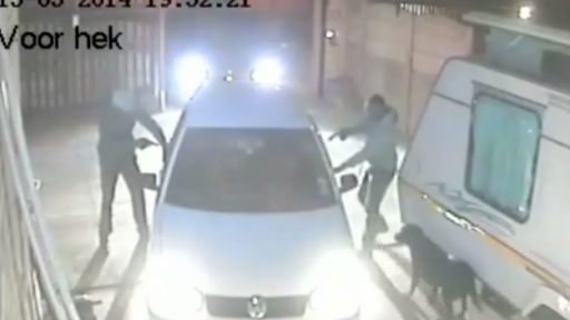 Armed Men Surround Car as a Horrifying Carjacking Is Caught on Camera