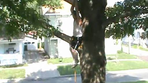 Dad Gets Stuck in Tree