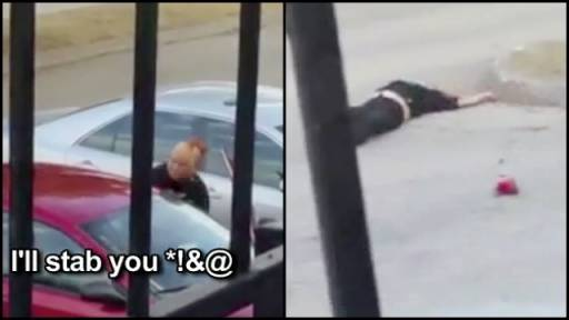 Shocking Video Shows the Moment a Heated Fight Turned into a Hit-and-Run
