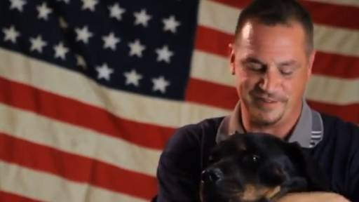Daily Pet: Service Dogs Helping Veterans