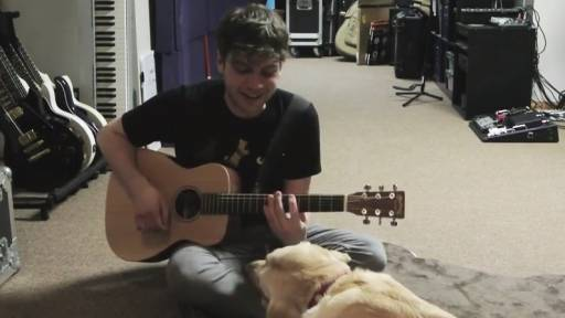 Dog Inspires Awesome Acoustic Ditty