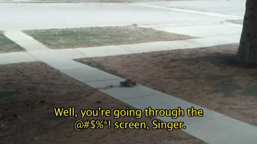 Squirrels Get Stuck Together But It's the Commentary That Makes the Video