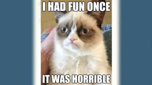 Update on Grumpy Cat