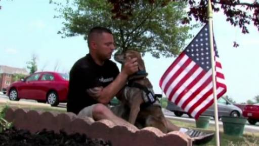 Dogs Helping Vets Deal with PTSD