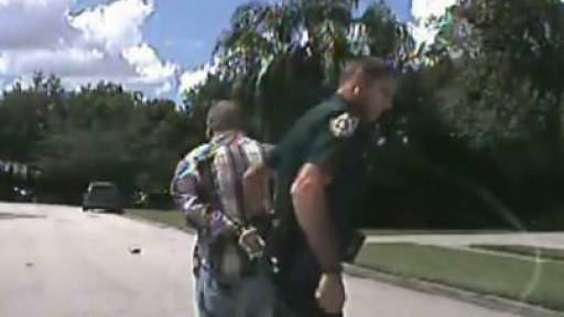 Dash Cam Footage of George Zimmerman's Latest Police Run-in