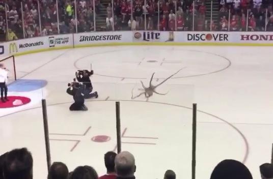 Hockey Fan Throws Giant Octopus Onto Ice Rtm