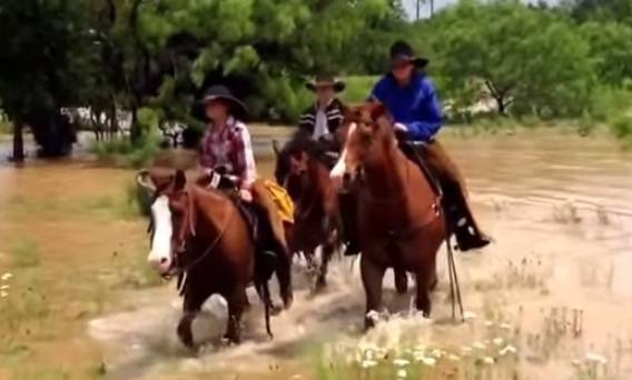 Cowboys Rescue Horses, Ponies on Flooded Texas Ranch | RTM