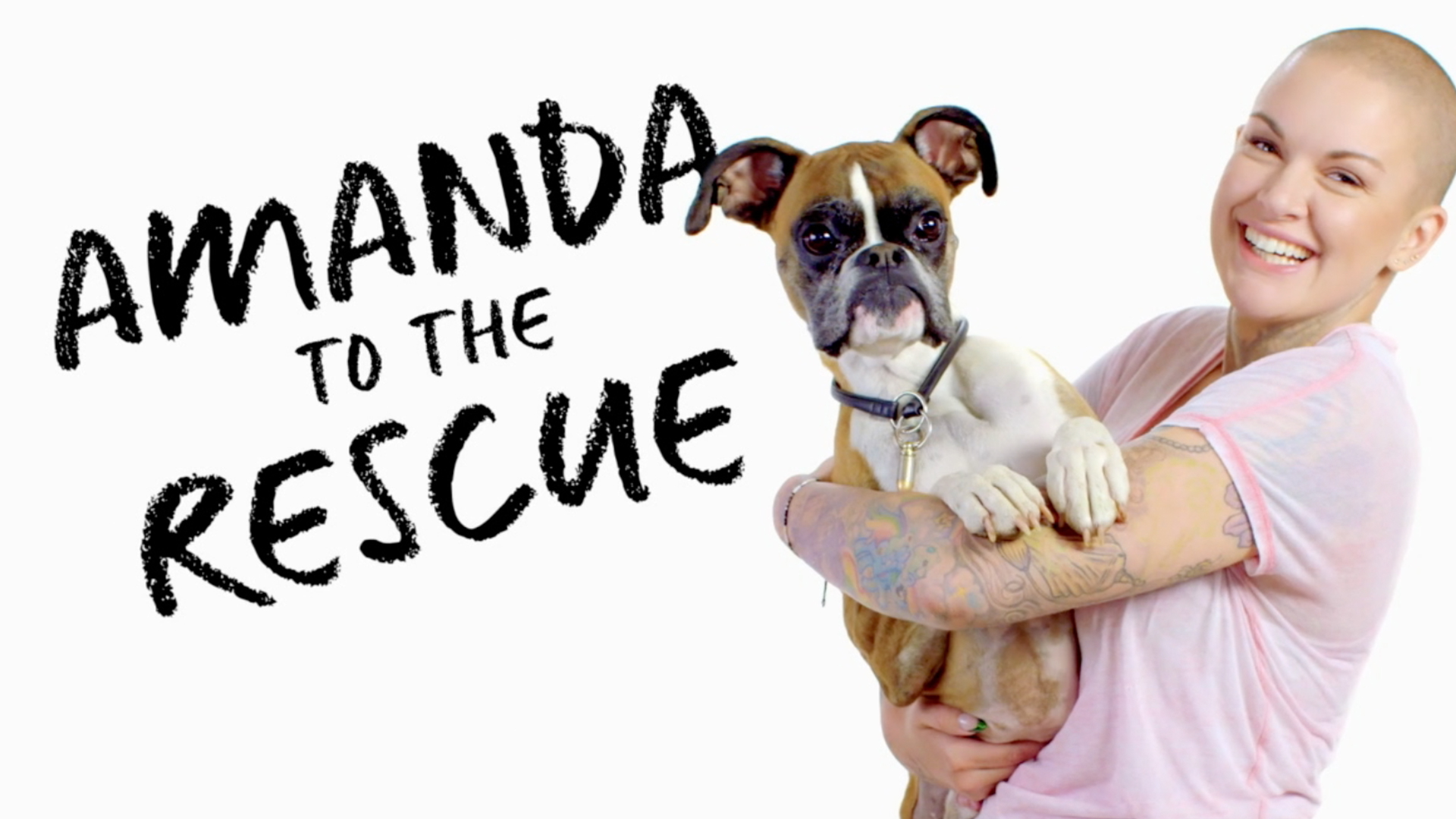 Image result for amanda to the rescue