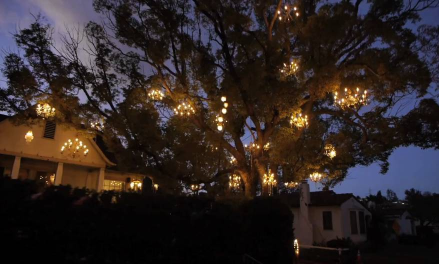 Every Branch Is Illuminated on the Chandelier Tree | RTM ...