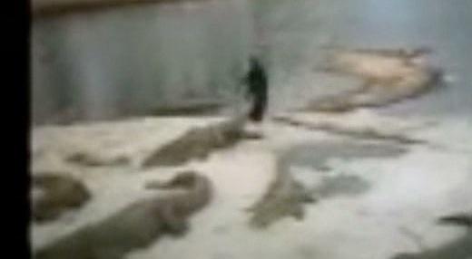GRAPHIC: Crocodile Trainer Killed in Ivory Coast | RTM
