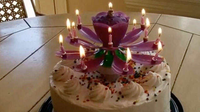 Stay 14 Forever With This Fabulous Blooming Birthday Candle