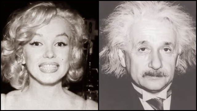 Which Face Do YOU See  Monroe or Einstein   9c7d408a537d