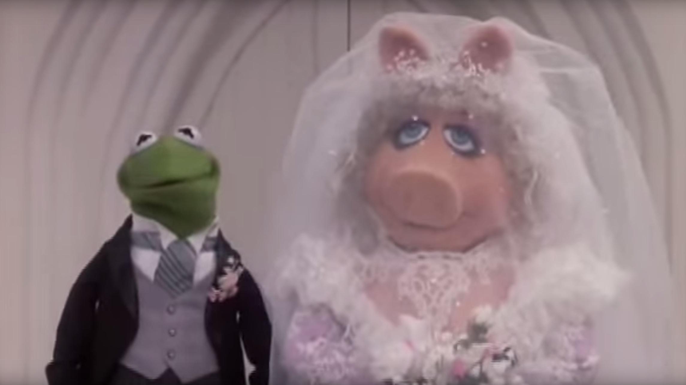Tbt Remembering Kermit Miss Piggy S Wedding Rtm Rightthisminute