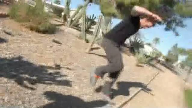 What Not To Do With Jumping Cactus Rtm Rightthisminute